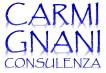 carmignaniconsulenza